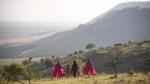 Overlooking Serengeti