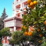 Matuete_marrocos_4