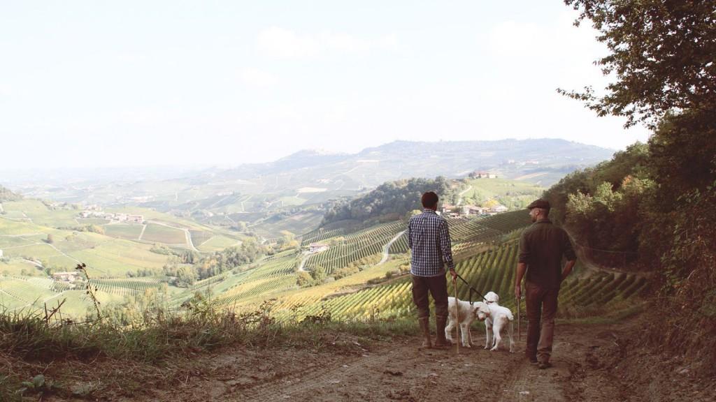 Matuete_Piemonte_04